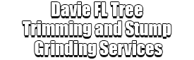 Davie FL Tree Trimming and Stump Grinding Services Logo-We Offer Tree Trimming Services, Tree Removal, Tree Pruning, Tree Cutting, Residential and Commercial Tree Trimming Services, Storm Damage, Emergency Tree Removal, Land Clearing, Tree Companies, Tree Care Service, Stump Grinding, and we're the Best Tree Trimming Company Near You Guaranteed!